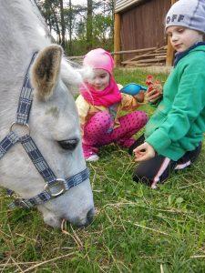 zabawa dzieci z koniem